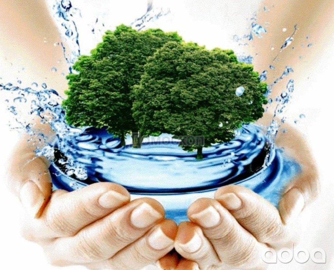 Информация для организаций – водопользователей